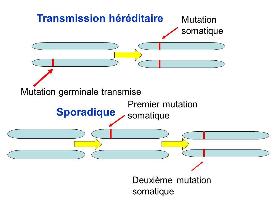 Perte de lallèle normal Mutation ou methylation Perte de chromosome et duplication Deletion Allele mutéAllele normal Perte de Chromosome