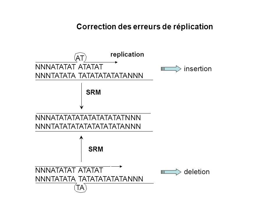 Instabilité des séquences simples répétées (microsatellites) TATATATATATATATATA Sang tumeur ADN Analyse des Produits de PCR Phénotype tumoral MSI
