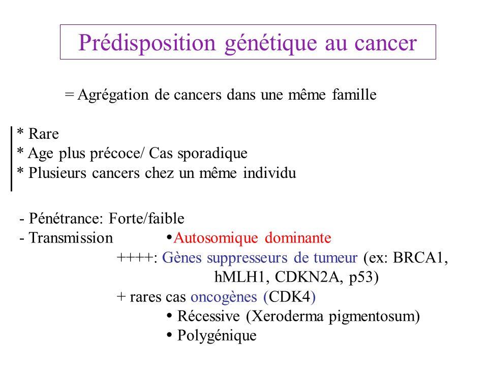 Prédisposition génétique au cancer = Agrégation de cancers dans une même famille * Rare * Age plus précoce/ Cas sporadique * Plusieurs cancers chez un
