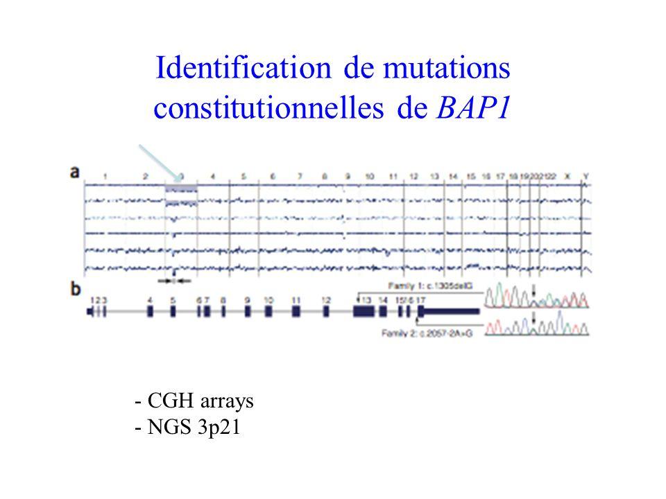 Identification de mutations constitutionnelles de BAP1 - CGH arrays - NGS 3p21