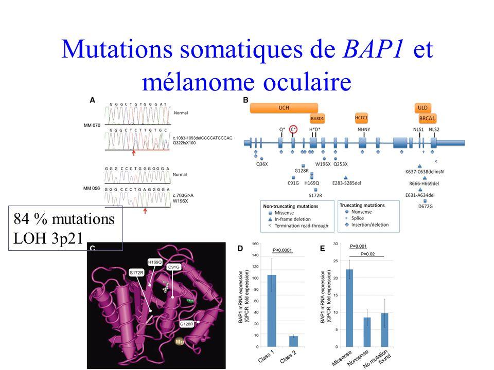Indications du test génétique 1) Mélanome Cutané Au moins 2 cas de mélanomes invasifs sur la même branche parentale Au moins 2 mélanomes invasifs chez la même personne Un cancer du pancréas peut remplacer un mélanome 2) Mélanome Oculaire Mélanome de la choroïde familial associé à mélanome cutané dans la famille associé à mésothéliome dans la famille Seuil de 10% de détection de mutation