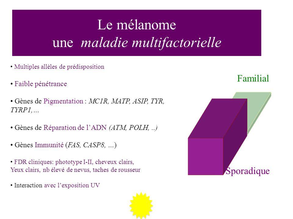Le mélanome une maladie multifactorielle Familial Sporadique Multiples allèles de prédisposition Faible pénétrance Gènes de Pigmentation : MC1R, MATP,