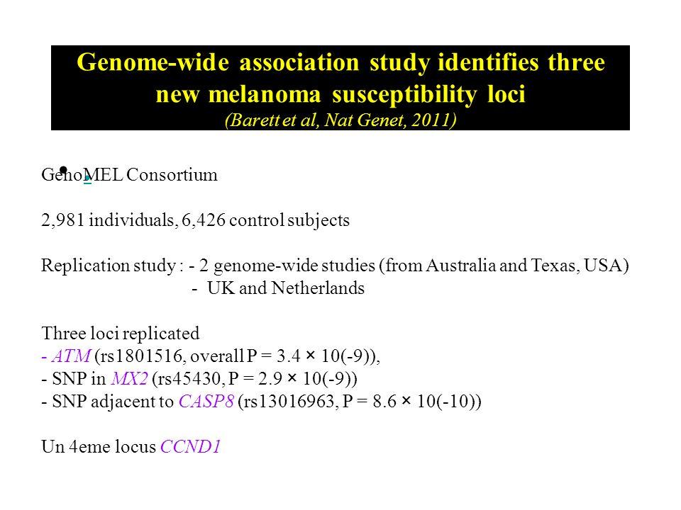 Genome-wide association study identifies three new melanoma susceptibility loci (Barett et al, Nat Genet, 2011). GenoMEL Consortium 2,981 individuals,