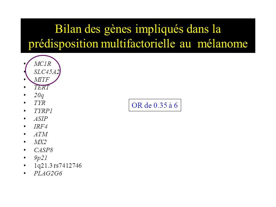 Bilan des gènes impliqués dans la prédisposition multifactorielle au mélanome MC1R SLC45A2 MITF TERT 20q TYR TYRP1 ASIP IRF4 ATM MX2 CASP8 9p21 1q21.3