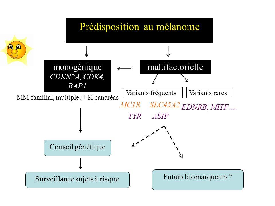 Prédisposition au mélanome monogénique CDKN2A, CDK4, BAP1 multifactorielle Variants fréquents MC1RSLC45A2 ASIPTYR EDNRB, MITF…. Conseil génétique Surv