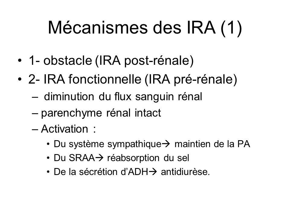 Mécanismes des IRA (1) 1- obstacle (IRA post-rénale) 2- IRA fonctionnelle (IRA pré-rénale) – diminution du flux sanguin rénal –parenchyme rénal intact –Activation : Du système sympathique maintien de la PA Du SRAA réabsorption du sel De la sécrétion dADH antidiurèse.