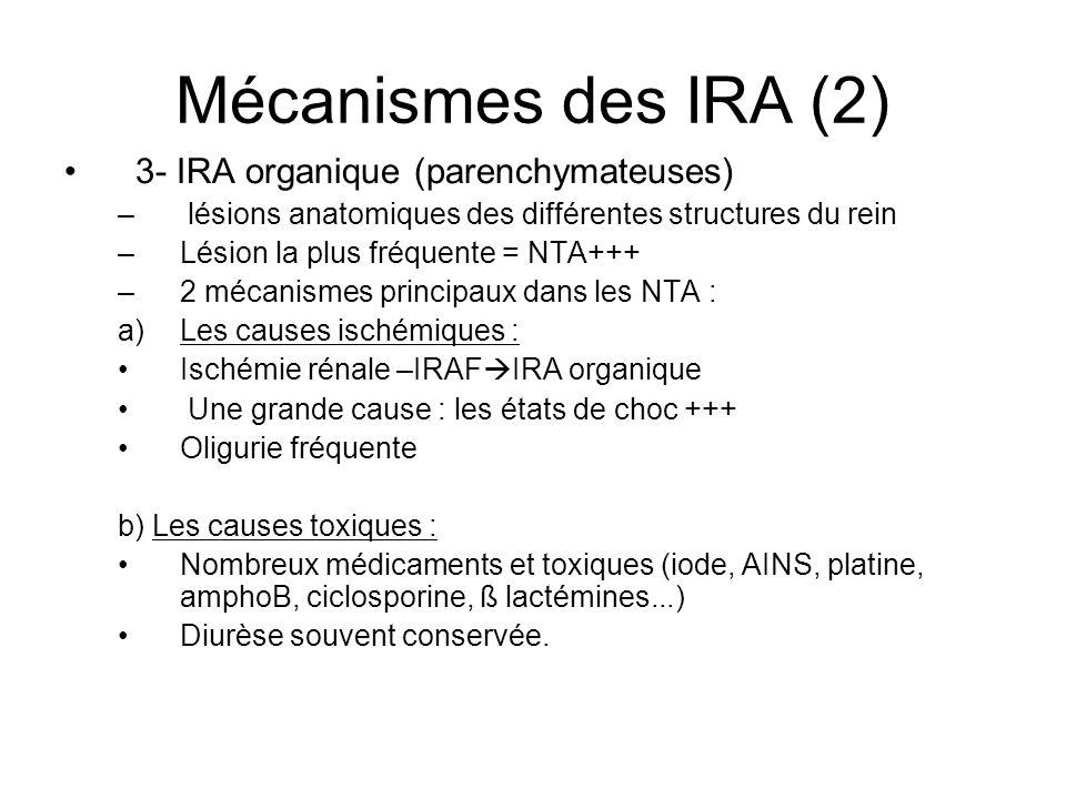 Mécanismes des IRA (2) 3- IRA organique (parenchymateuses) – lésions anatomiques des différentes structures du rein –Lésion la plus fréquente = NTA+++ –2 mécanismes principaux dans les NTA : a)Les causes ischémiques : Ischémie rénale –IRAF IRA organique Une grande cause : les états de choc +++ Oligurie fréquente b) Les causes toxiques : Nombreux médicaments et toxiques (iode, AINS, platine, amphoB, ciclosporine, ß lactémines...) Diurèse souvent conservée.