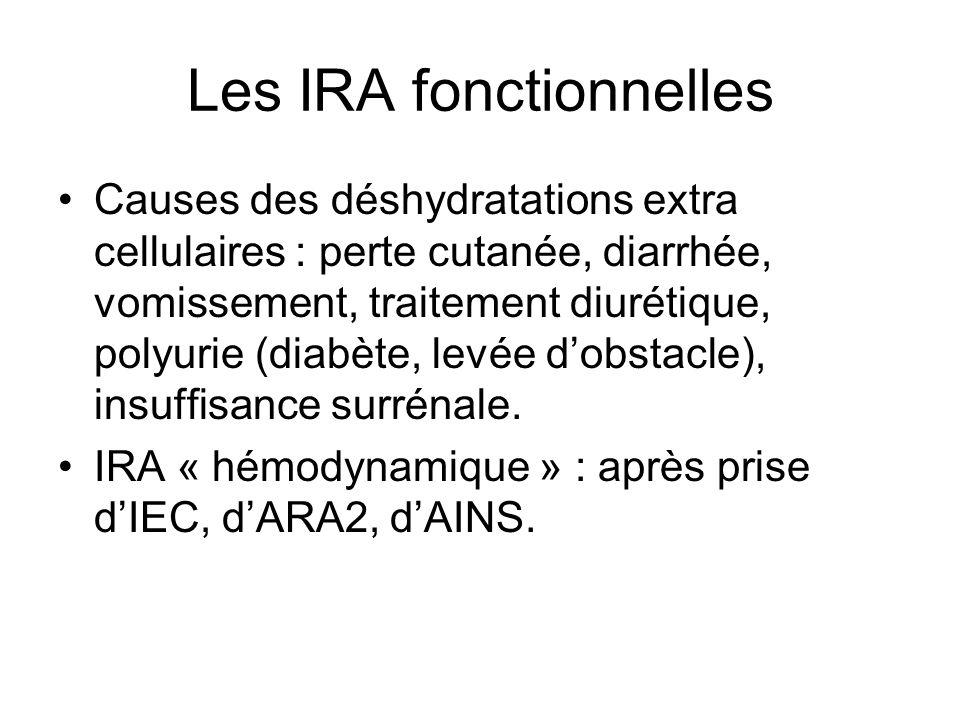 Les IRA fonctionnelles Causes des déshydratations extra cellulaires : perte cutanée, diarrhée, vomissement, traitement diurétique, polyurie (diabète, levée dobstacle), insuffisance surrénale.