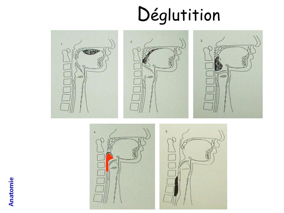 Manœuvre de Sellick Prévention de linhalation par compression de lœsophage Manœuvre à réaliser pour tout « estomac plein »