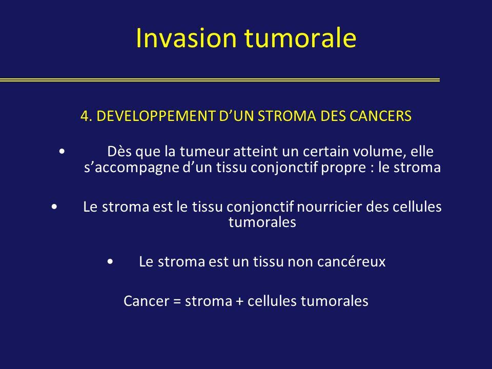 Invasion tumorale 4. DEVELOPPEMENT DUN STROMA DES CANCERS Dès que la tumeur atteint un certain volume, elle saccompagne dun tissu conjonctif propre :