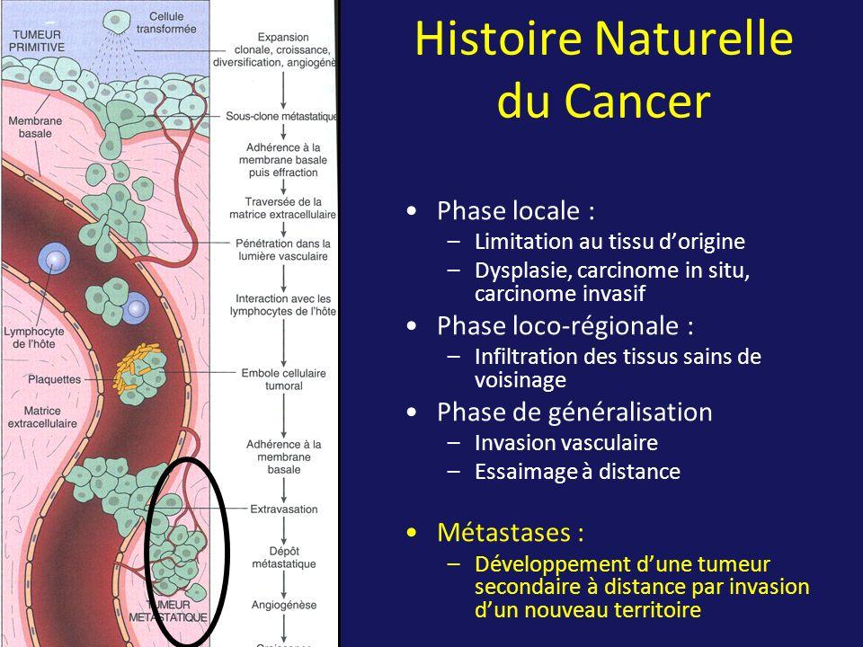 Histoire Naturelle du Cancer Phase locale : –Limitation au tissu dorigine –Dysplasie, carcinome in situ, carcinome invasif Phase loco-régionale : –Inf