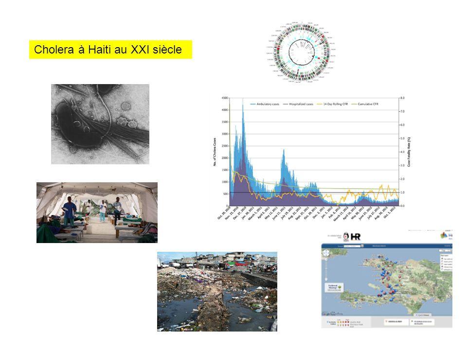 Cholera à Haiti au XXI siècle