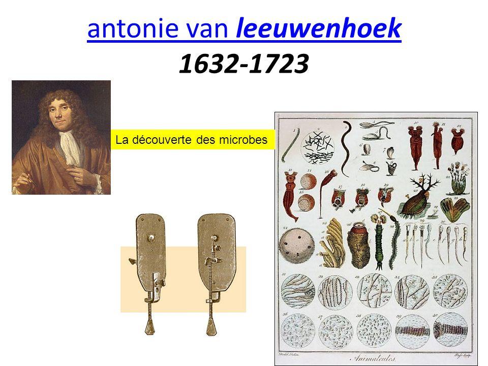 antonie van leeuwenhoek antonie van leeuwenhoek 1632-1723 La découverte des microbes