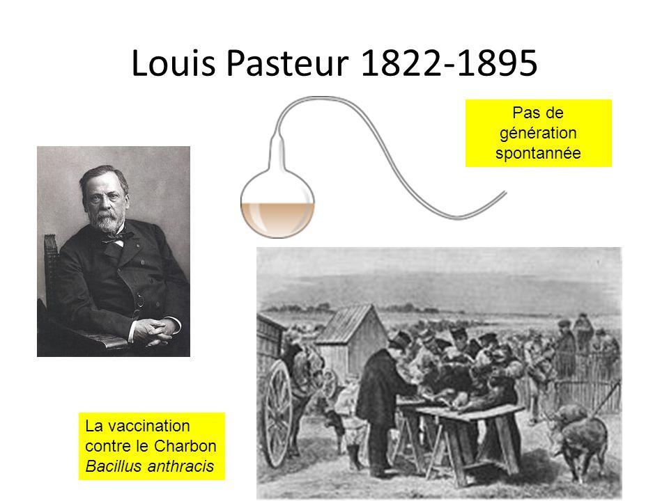 Louis Pasteur 1822-1895 Pas de génération spontannée La vaccination contre le Charbon Bacillus anthracis