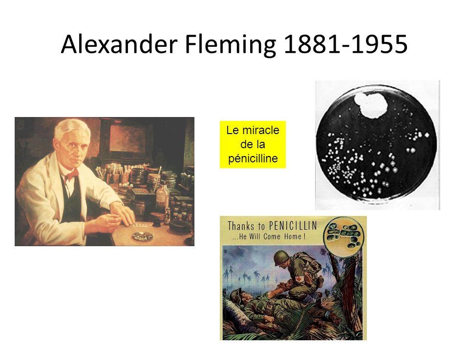 Alexander Fleming 1881-1955 Le miracle de la pénicilline