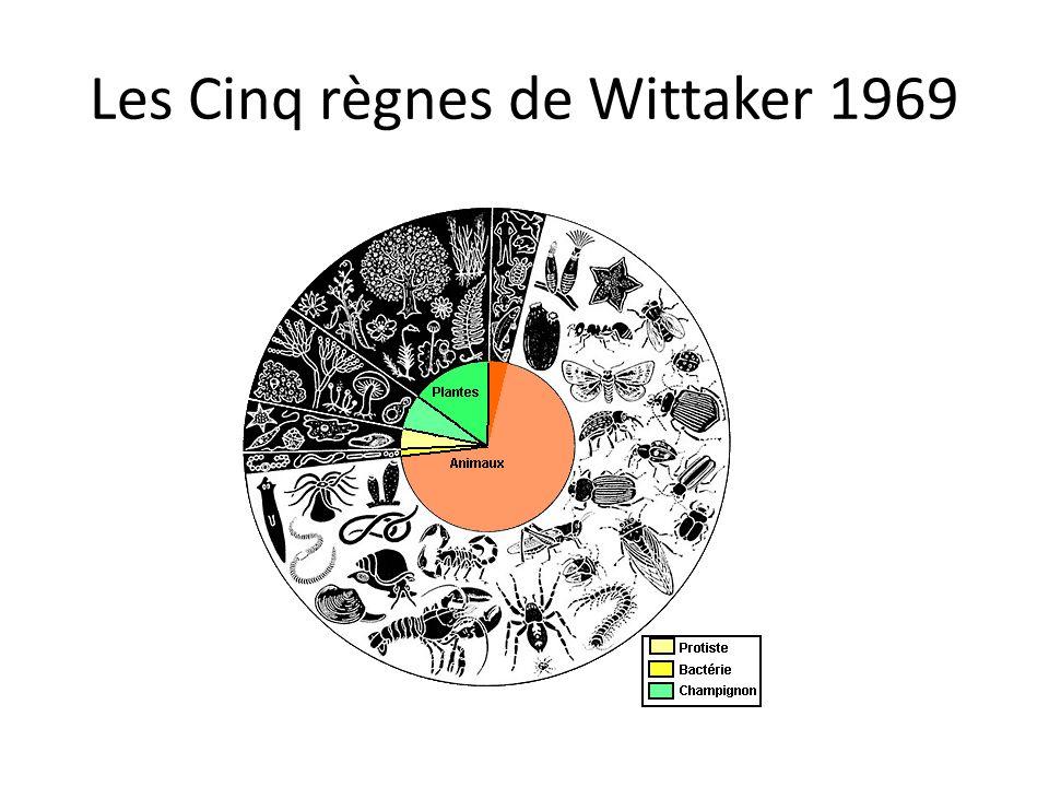 Les Cinq règnes de Wittaker 1969