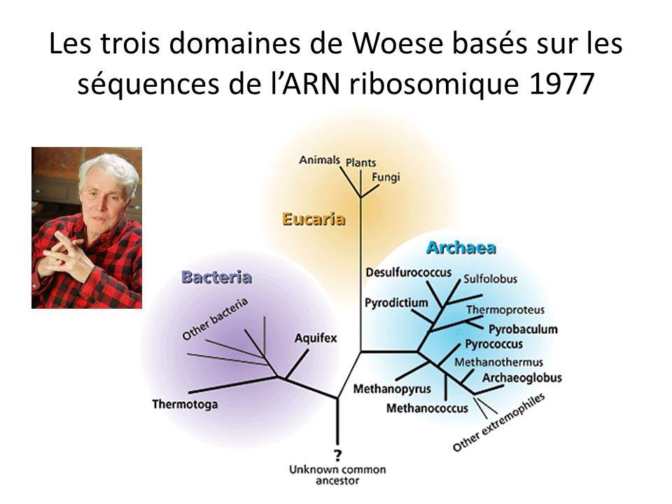 Les trois domaines de Woese basés sur les séquences de lARN ribosomique 1977