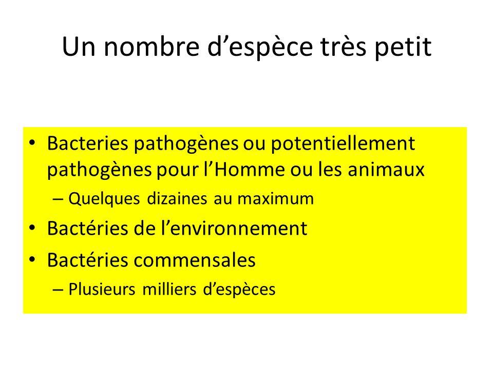 Un nombre despèce très petit Bacteries pathogènes ou potentiellement pathogènes pour lHomme ou les animaux – Quelques dizaines au maximum Bactéries de