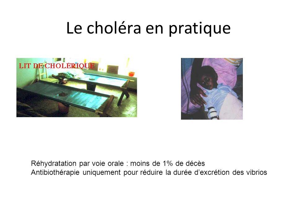 Le choléra en pratique Réhydratation par voie orale : moins de 1% de décès Antibiothérapie uniquement pour réduire la durée dexcrétion des vibrios