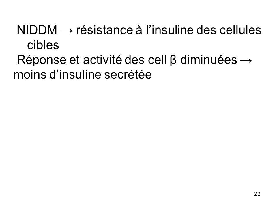 23 NIDDM résistance à linsuline des cellules cibles Réponse et activité des cell β diminuées moins dinsuline secrétée