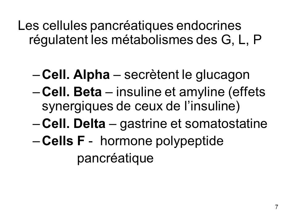 7 Les cellules pancréatiques endocrines régulatent les métabolismes des G, L, P –Cell. Alpha – secrètent le glucagon –Cell. Beta – insuline et amyline