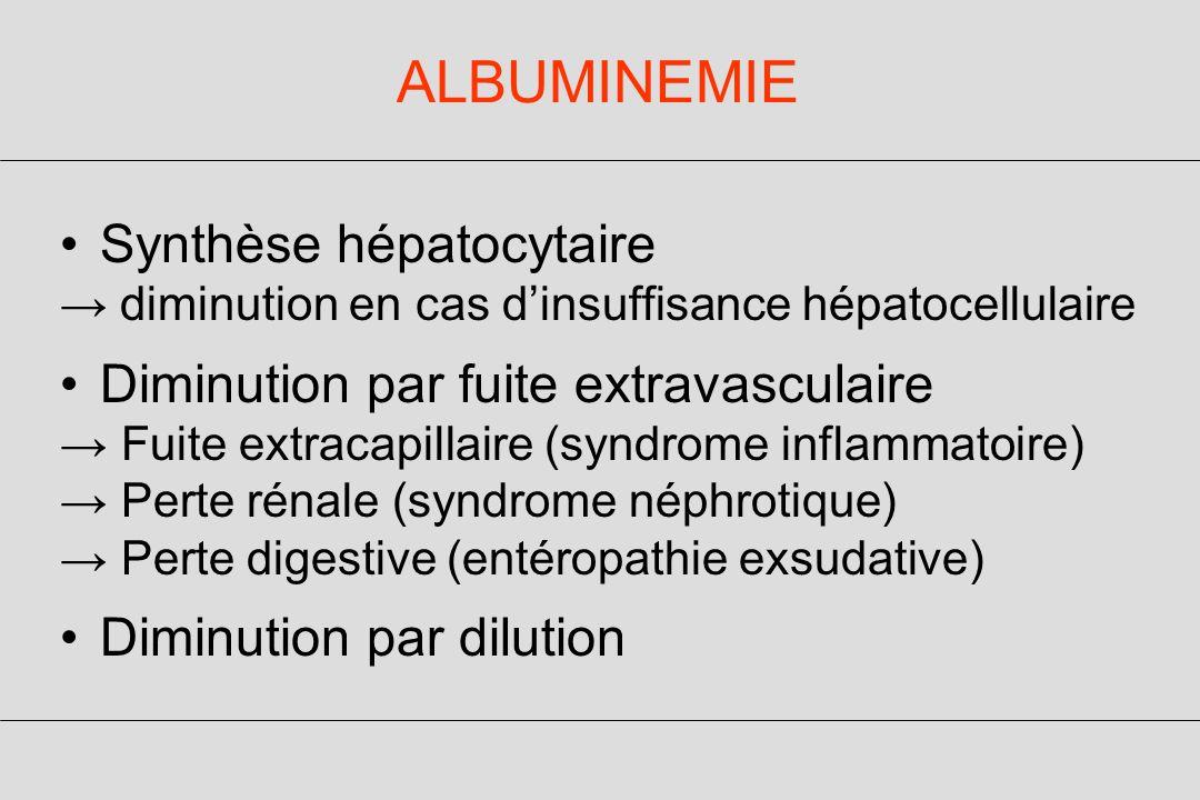ALBUMINEMIE Synthèse hépatocytaire diminution en cas dinsuffisance hépatocellulaire Diminution par fuite extravasculaire Fuite extracapillaire (syndrome inflammatoire) Perte rénale (syndrome néphrotique) Perte digestive (entéropathie exsudative) Diminution par dilution