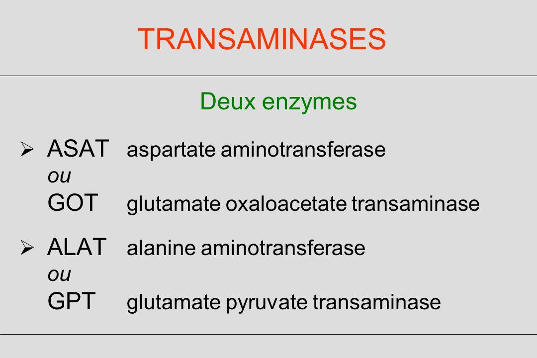 TRANSAMINASES Deux enzymes ASAT aspartate aminotransferase ou GOT glutamate oxaloacetate transaminase ALAT alanine aminotransferase ou GPT glutamate pyruvate transaminase