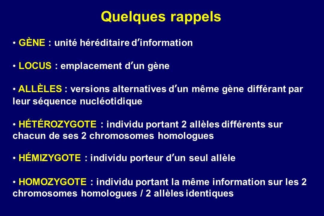 GÈNE : unité héréditaire dinformation LOCUS : emplacement dun gène ALLÈLES : versions alternatives dun même gène différant par leur séquence nucléotidique HÉTÉROZYGOTE : individu portant 2 allèles différents sur chacun de ses 2 chromosomes homologues HÉMIZYGOTE : individu porteur dun seul allèle HOMOZYGOTE : individu portant la même information sur les 2 chromosomes homologues / 2 allèles identiques Quelques rappels