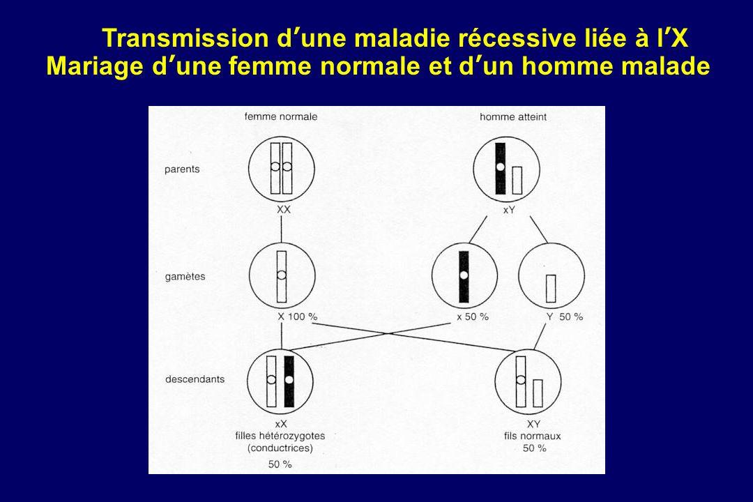 Transmission dune maladie récessive liée à lX Mariage dune femme normale et dun homme malade