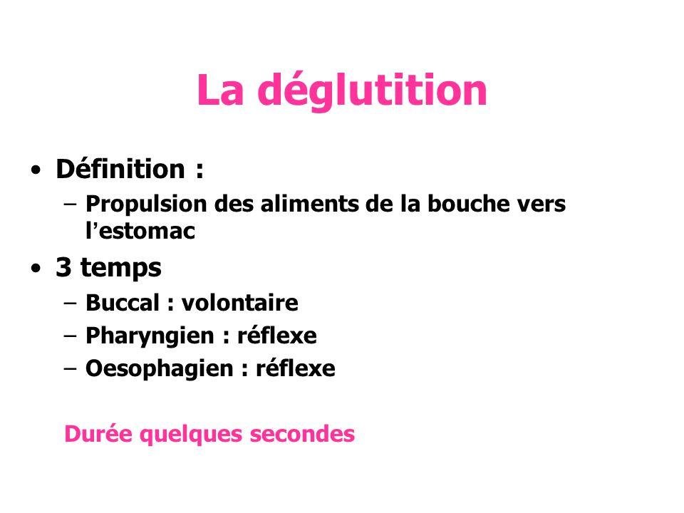 La déglutition Définition : –Propulsion des aliments de la bouche vers lestomac 3 temps –Buccal : volontaire –Pharyngien : réflexe –Oesophagien : réfl