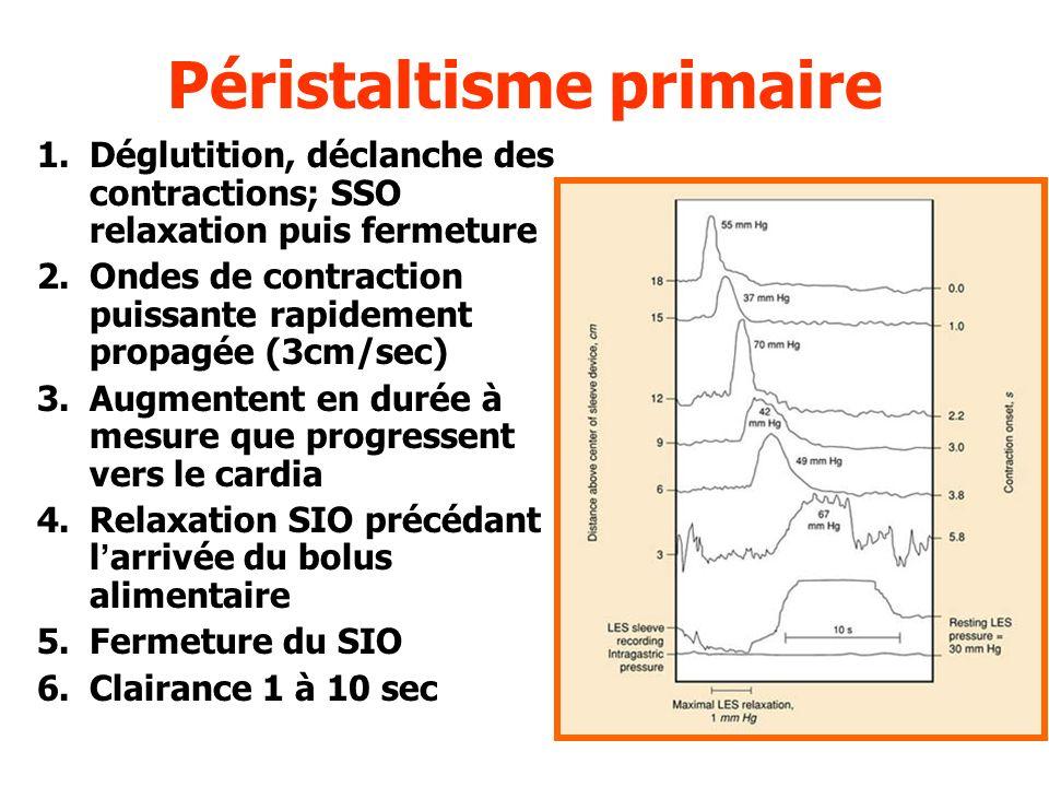 Péristaltisme secondaire Contraction oesophagienne survenant en labsence de déglutition Déclanchée par –Absence dévacuation de la totalité du contenu oesophagien, distension –Reflux gastro-oesophagien
