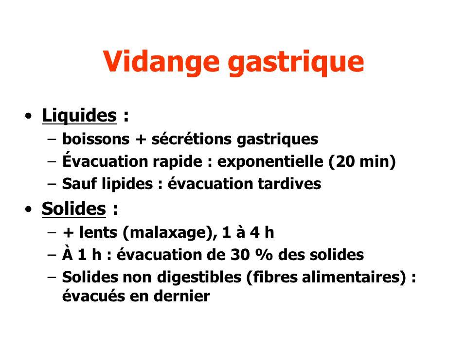 Vidange gastrique Liquides : –boissons + sécrétions gastriques –Évacuation rapide : exponentielle (20 min) –Sauf lipides : évacuation tardives Solides
