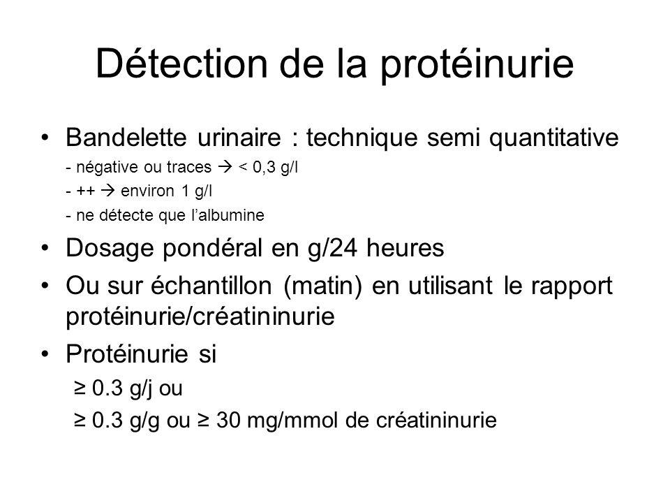 Détection de la protéinurie Bandelette urinaire : technique semi quantitative - négative ou traces < 0,3 g/l - ++ environ 1 g/l - ne détecte que lalbu