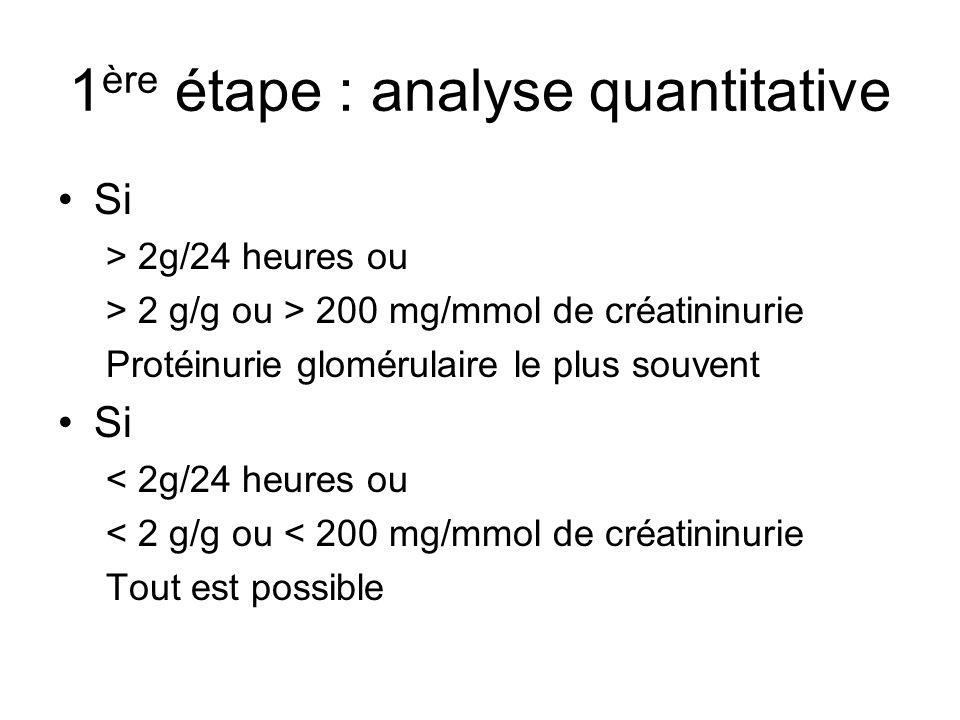 1 ère étape : analyse quantitative Si > 2g/24 heures ou > 2 g/g ou > 200 mg/mmol de créatininurie Protéinurie glomérulaire le plus souvent Si < 2g/24