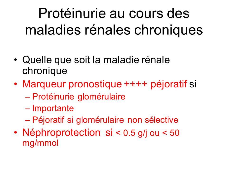 Protéinurie au cours des maladies rénales chroniques Quelle que soit la maladie rénale chronique Marqueur pronostique ++++ péjoratif si –Protéinurie g