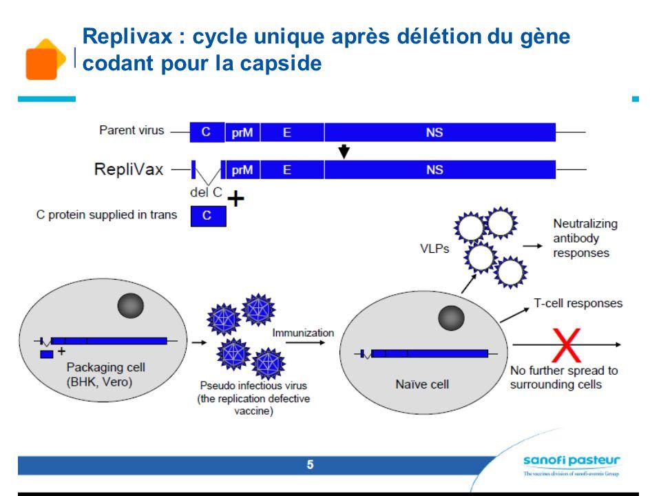 Replivax : cycle unique après délétion du gène codant pour la capside