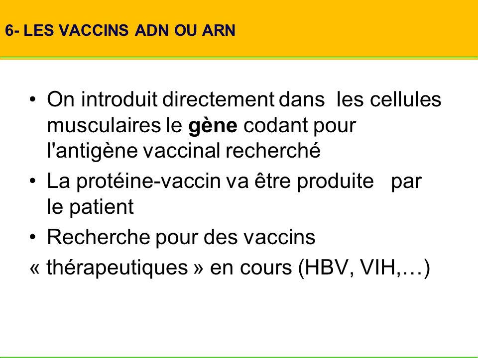 6- LES VACCINS ADN OU ARN On introduit directement dans les cellules musculaires le gène codant pour l'antigène vaccinal recherché La protéine-vaccin