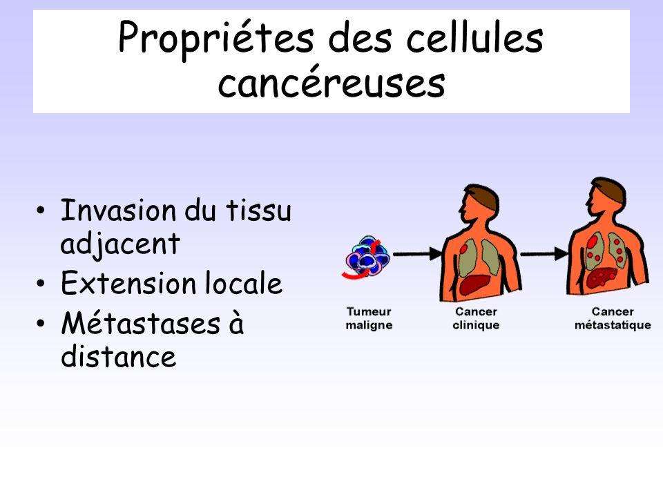 Propriétes des cellules cancéreuses Invasion du tissu adjacent Extension locale Métastases à distance
