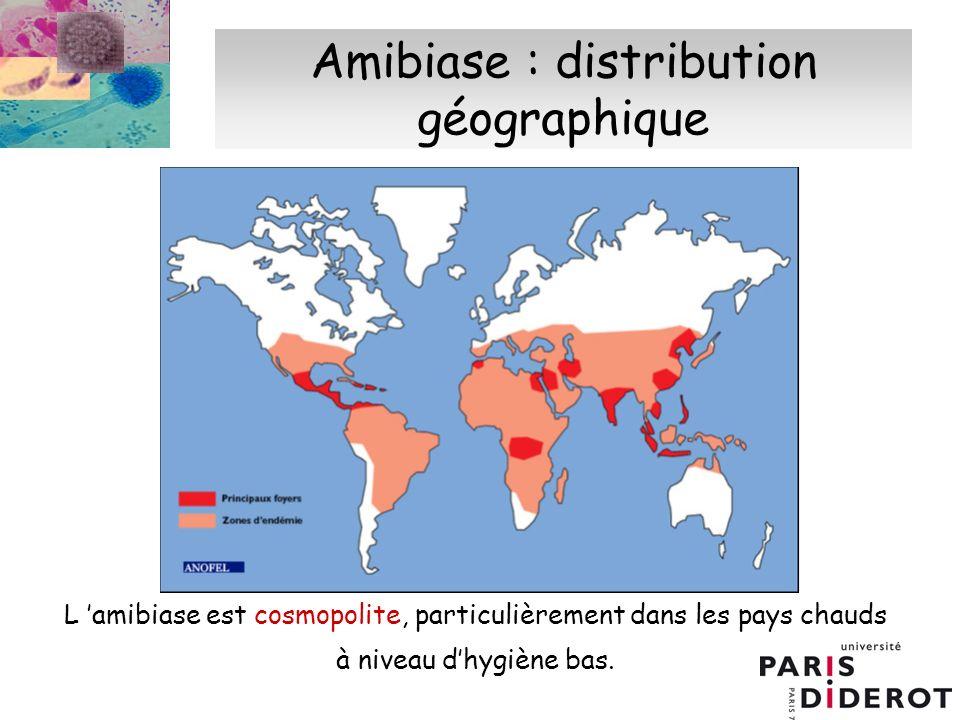 Amibiase : distribution géographique L amibiase est cosmopolite, particulièrement dans les pays chauds à niveau dhygiène bas.