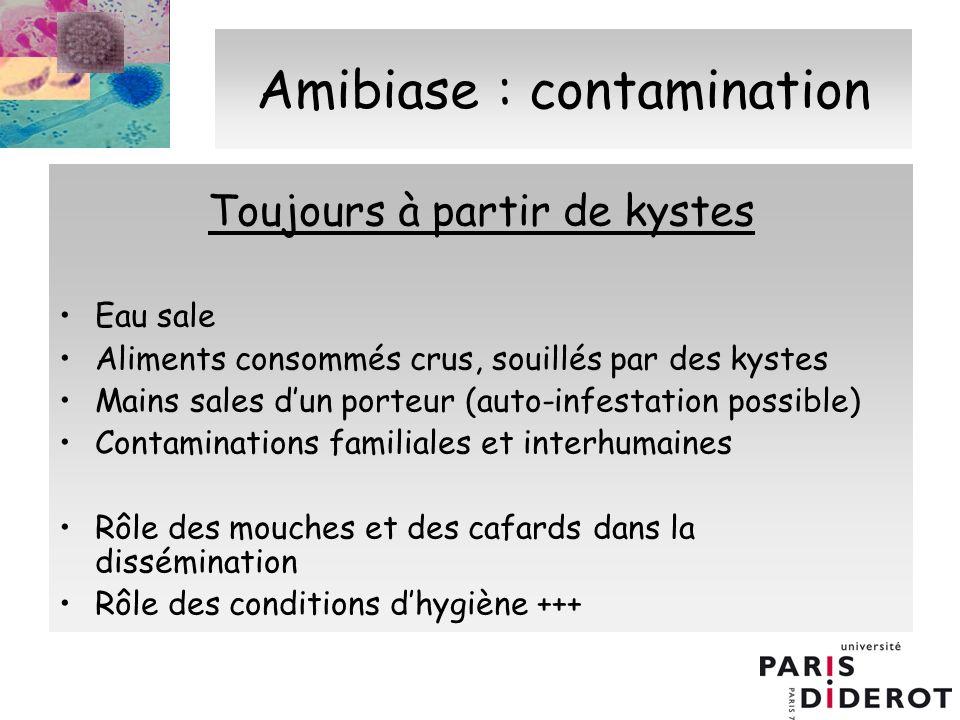 Amibiase : contamination Toujours à partir de kystes Eau sale Aliments consommés crus, souillés par des kystes Mains sales dun porteur (auto-infestati