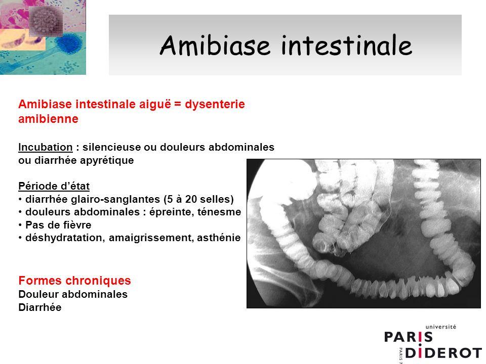 Physiopathologie de lamibiase intestinale aiguë Invasion de la muqueuse intestinale par des formes végétatives hématophages