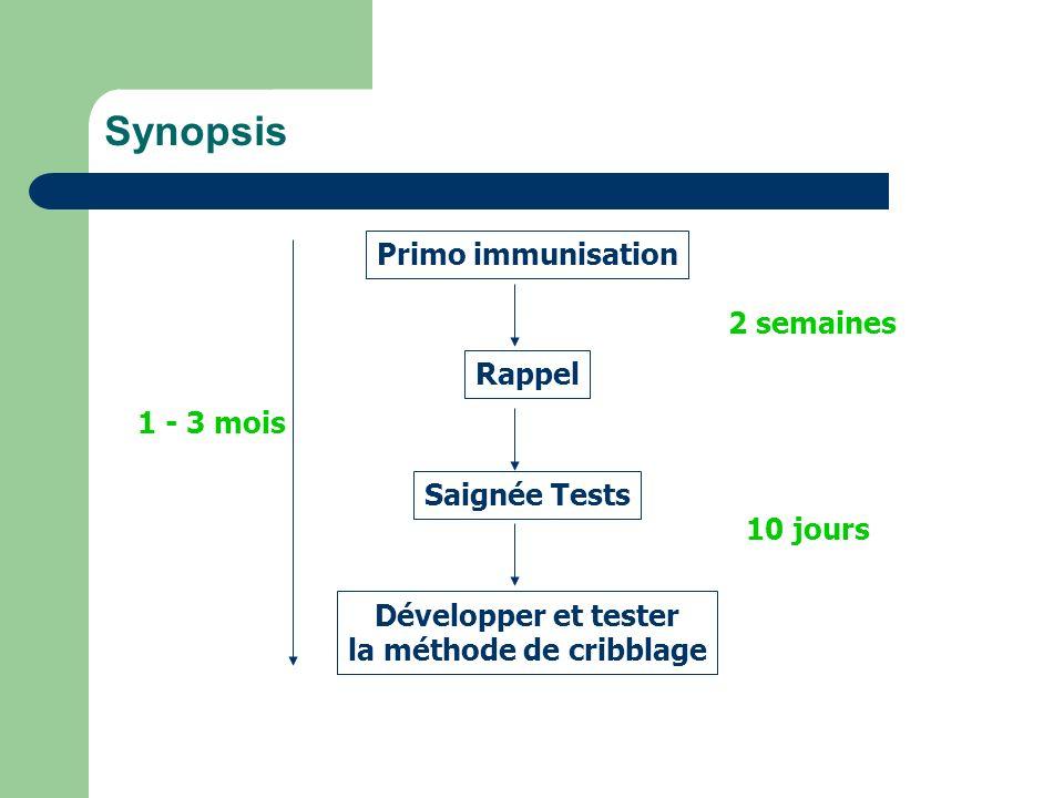 Synopsis Primo immunisation Rappel Saignée Tests Développer et tester la méthode de cribblage 2 semaines 10 jours 1 - 3 mois