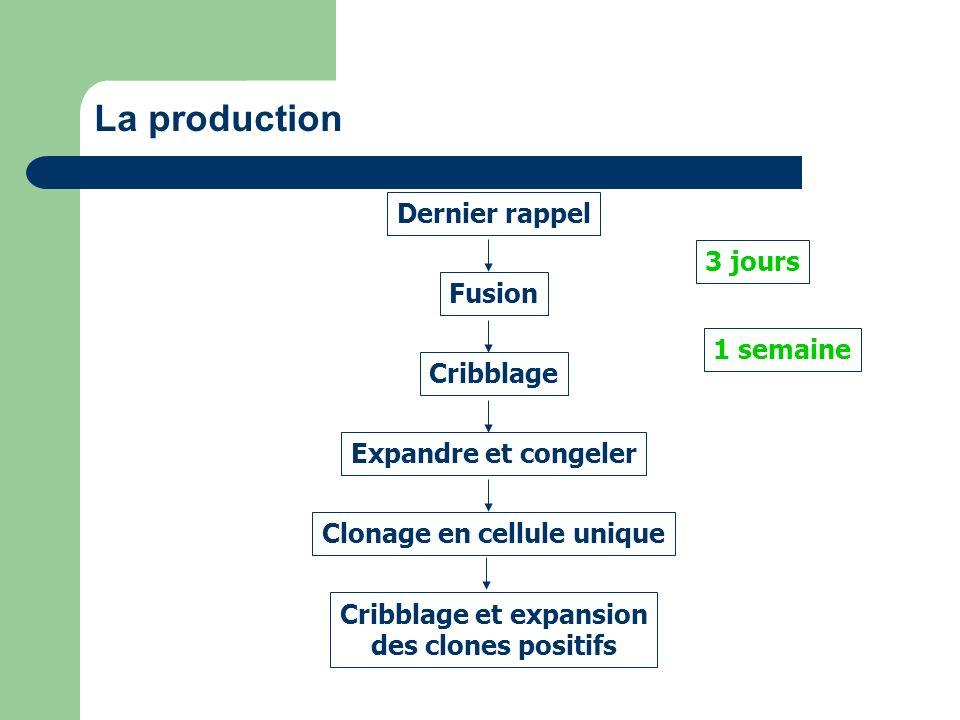 La production Dernier rappel Fusion Cribblage Expandre et congeler Clonage en cellule unique Cribblage et expansion des clones positifs 3 jours 1 sema