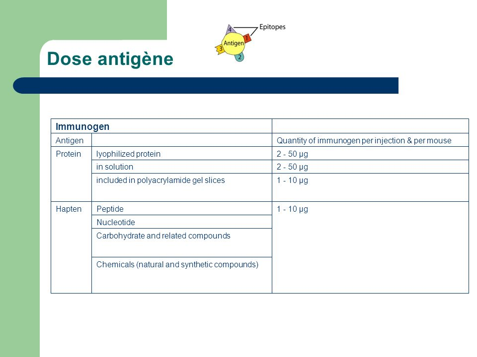 Dose antigène Immunogen AntigenQuantity of immunogen per injection & per mouse Proteinlyophilized protein2 - 50 µg in solution2 - 50 µg included in polyacrylamide gel slices1 - 10 µg HaptenPeptide1 - 10 µg Nucleotide Carbohydrate and related compounds Chemicals (natural and synthetic compounds)