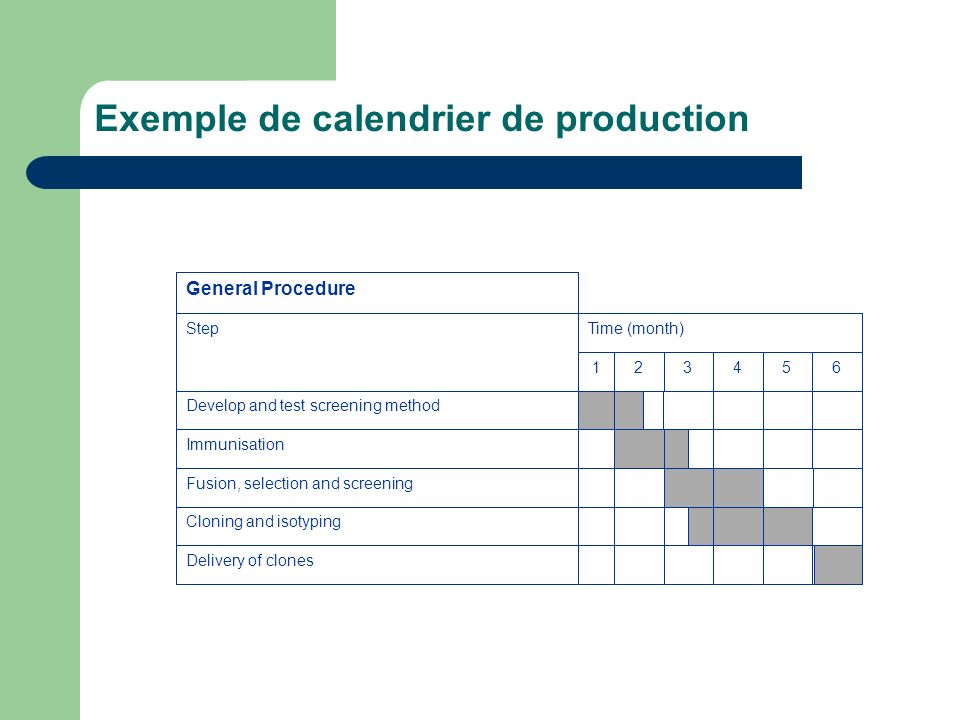 Exemple de calendrier de production General Procedure StepTime (month) 123456 Develop and test screening method Immunisation Fusion, selection and screening Cloning and isotyping Delivery of clones