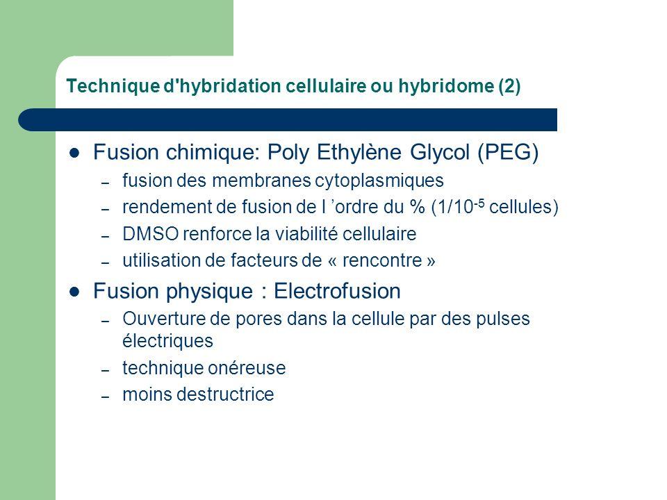 Technique d'hybridation cellulaire ou hybridome (2) Fusion chimique: Poly Ethylène Glycol (PEG) – fusion des membranes cytoplasmiques – rendement de f