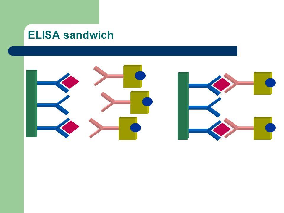 ELISA sandwich 2ème étape d incubation immunologique Conjugué immuno-enzymatique