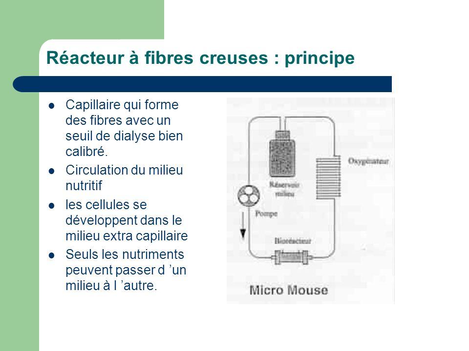 Réacteur à fibres creuses : principe Capillaire qui forme des fibres avec un seuil de dialyse bien calibré. Circulation du milieu nutritif les cellule