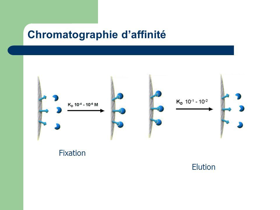 Chromatographie daffinité Fixation Elution
