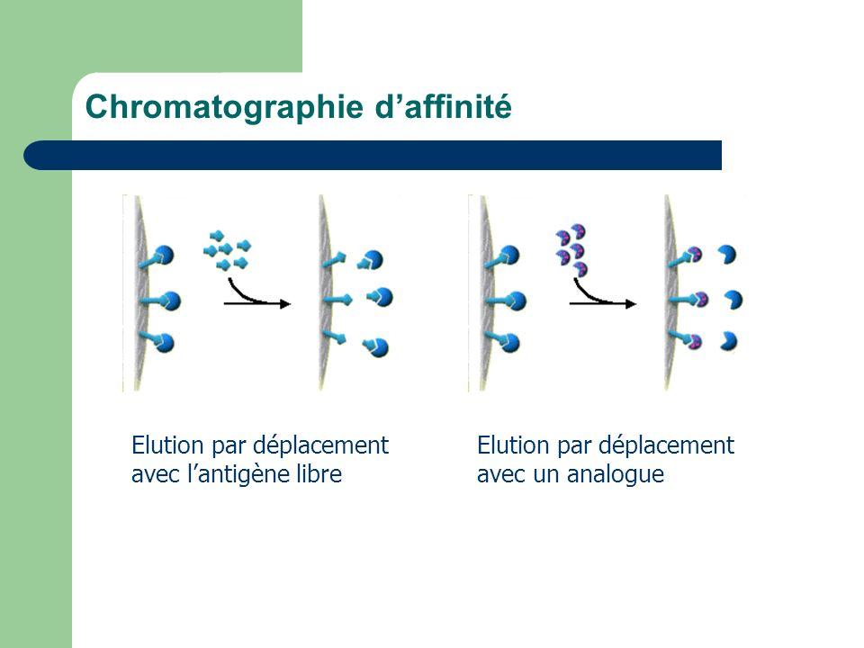 Chromatographie daffinité Elution par déplacement avec lantigène libre Elution par déplacement avec un analogue